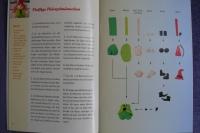 Schlenker-Kerle aus Fimo® / L. Bastian (Chrostphorus 2009)