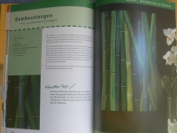 Farbwelten auf Keilrahmen / Topp 2006