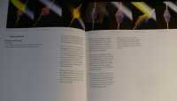 Faszination Glasperlen / Juricic (Haupt 2010)