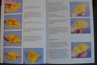 Papierfalten (Transparentpapier) / M. Vogelbacher (Topp - 2004)