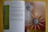 Kugelsterne aus Perlen / Ingrid Moras (Christophorus 2012)