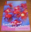 Basteln mit Trinkhalmen / Schröder-Vogel (Topp - 2005)
