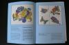 Window Color zu jeder Jahreszeit / Ohmann (Braumann 1998)