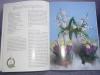 Zauberhafte Blumenkinder / Maja Rabe (Bücherzauber 2004)