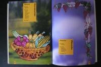 Window Color - Die schönsten Blumen & Ornamente (Schwager&Steinlein 2000)