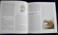 Filzen für Gross und Klein (Freies Geistesleben - 1996)